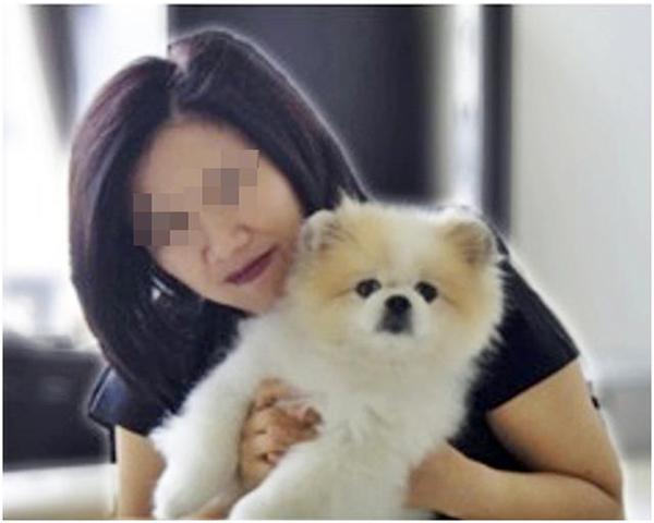港媒:曾对新冠病毒检测呈弱阳性反应的宠物狗离世