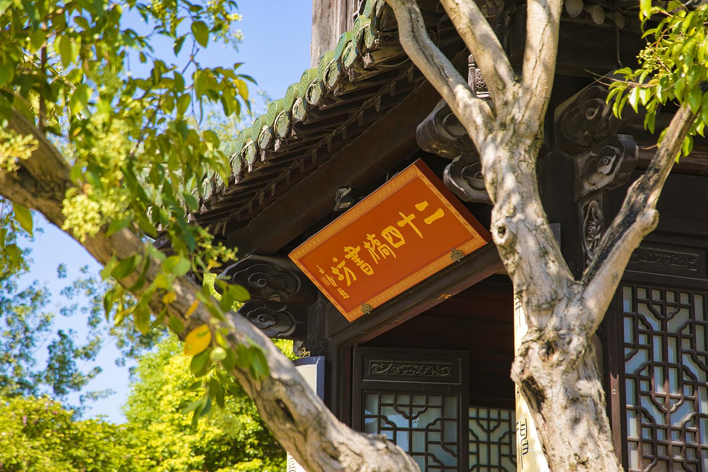 扬州五月也很美,最经典旅游线路推荐,看湖光山色,花木扶疏