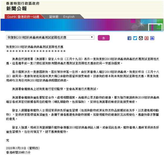 又一例!香港一德国狼狗新冠病毒检测呈阳性