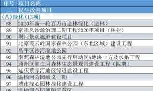 2020年北京市重点工程项目清单