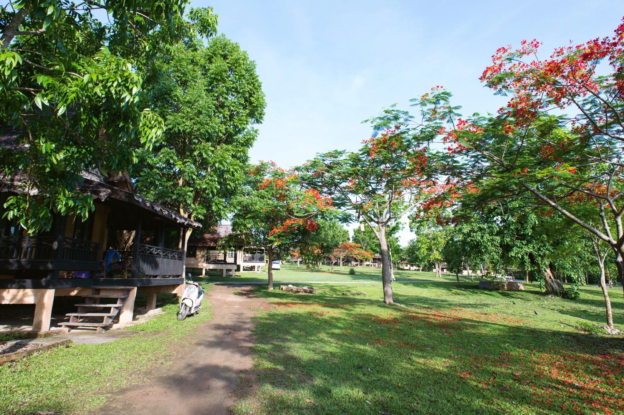 原创            泰国拜县田园式酒店,你向往的诗和远方就藏在这里,一晚不到200