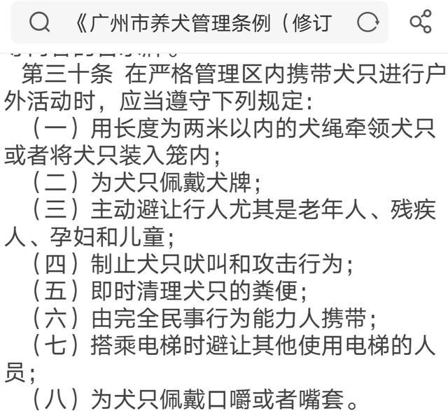 原创 广州养犬条例修订,未成年人克制遛狗?