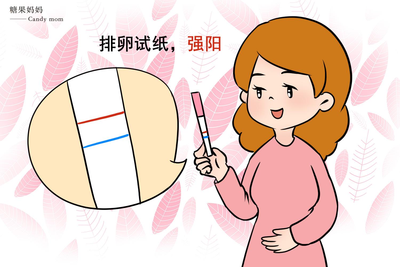排卵试纸监测到强阳,为何没有一击即中?找准方法好孕并不难