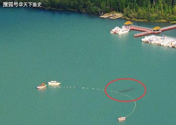 """原创            新疆湖泊出现""""水怪""""?牛羊被拖走没人敢靠近,专家看后脸色大变"""