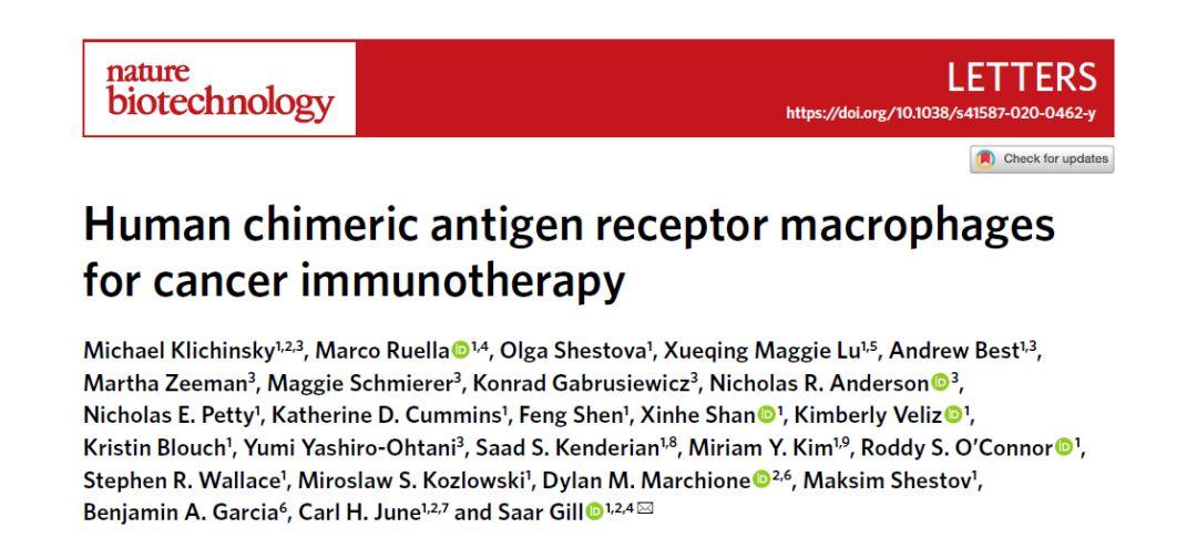 Nature子刊:对抗实体肿瘤,研究者发现CAR巨噬细胞新疗法!