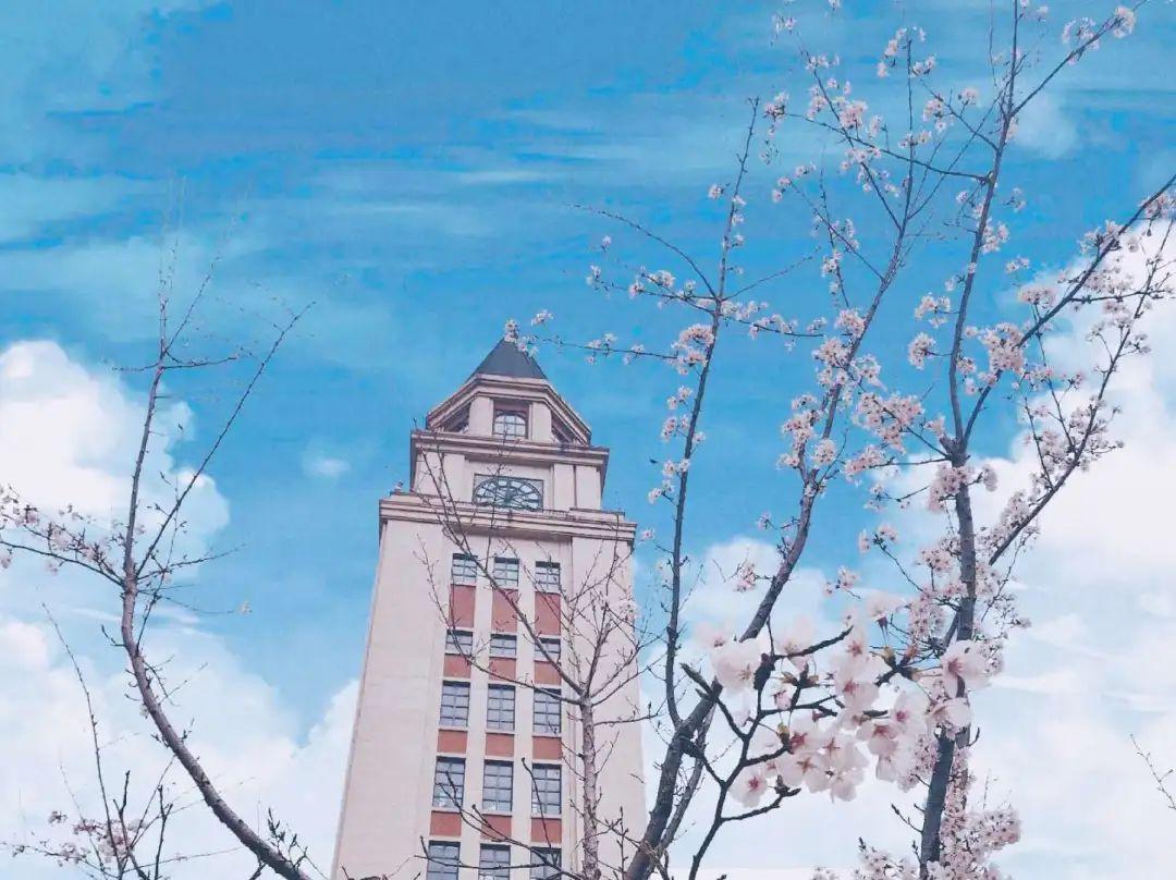 上海中侨楼分布图