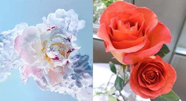 木质:2020年玫瑰香水加了木质调变得不粉、超耐闻!连男生也可以喷,