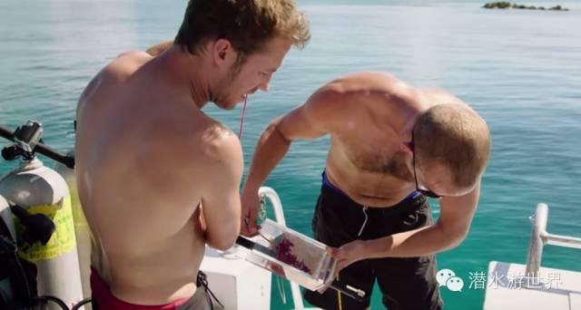 这两个作死的潜水员想实验鲨鱼是不是真的很嗜血,竟将自己的血液倒入鲨鱼池中...效果...