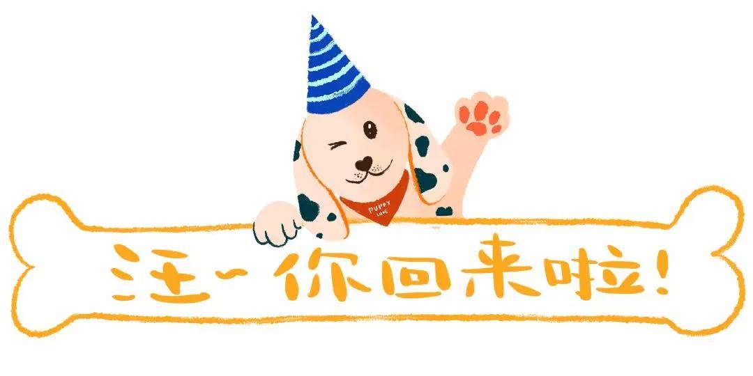 """原创 陈伟霆""""遛狗""""视频曝光,网友笑翻:大型犬遛人现场哈哈哈哈!"""
