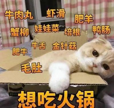 """「烤肉」堂食回归!火锅、烤肉……我们可以""""坐着吃""""啦!,"""