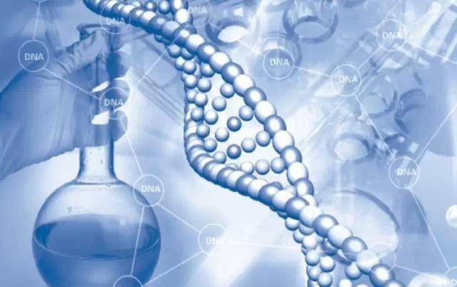 基因检测和常规体检的区别 什么情况下要做基因检测?
