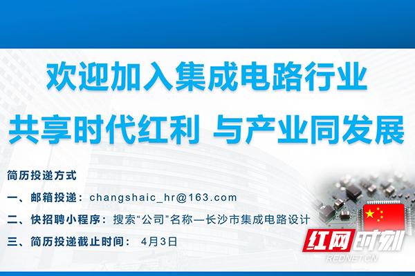 @集成电路设计毕业生,256个集成