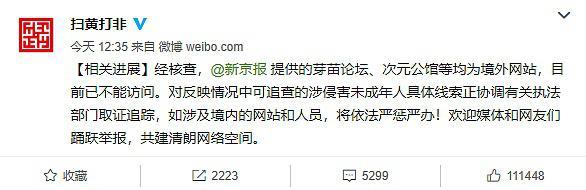 """""""国内版N号房""""核查进展公布!官方:均为境外网站"""