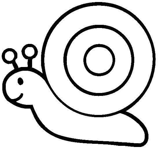 幼儿园动物简笔画 蜗牛