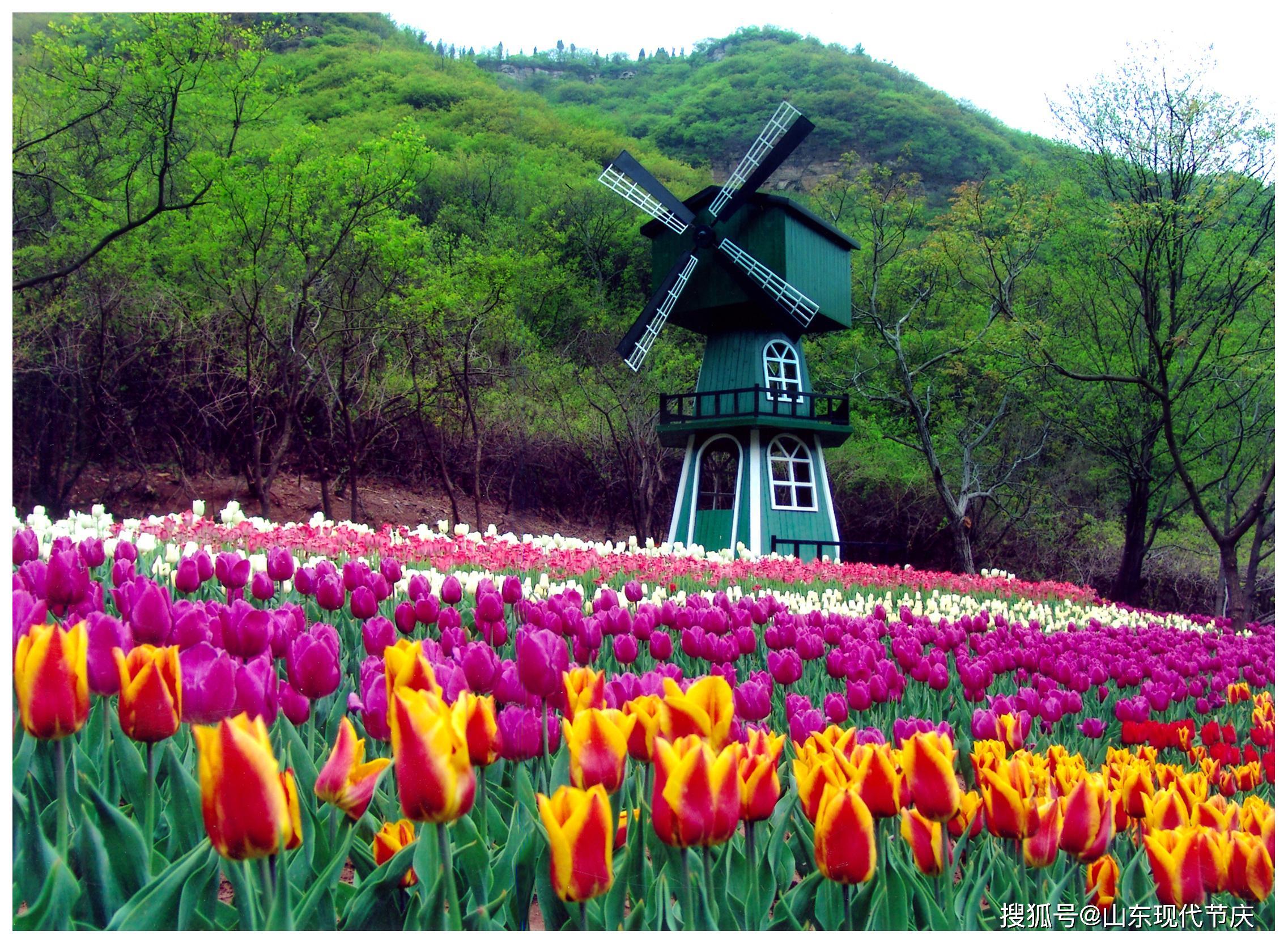 【旅游】济南红叶谷生态文化旅游区3月30日恢复开园