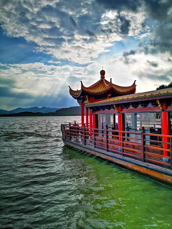 西湖龙井图片