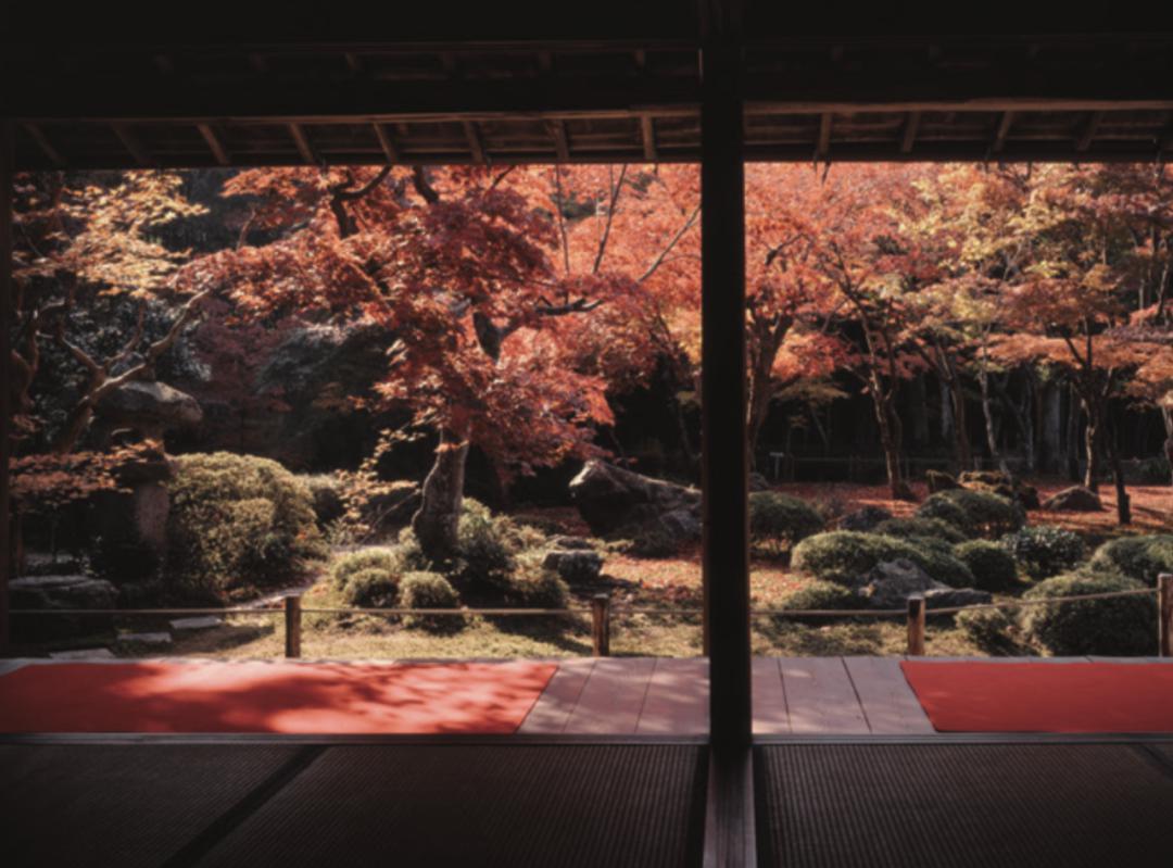 爱上京都,从庭园开始