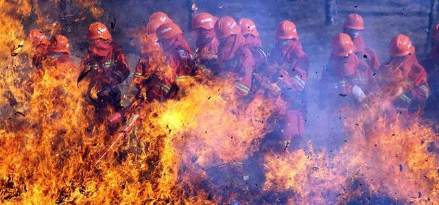 他们向生而死,为了这世界向死而生,《勇往直前》致敬救火英雄_大火