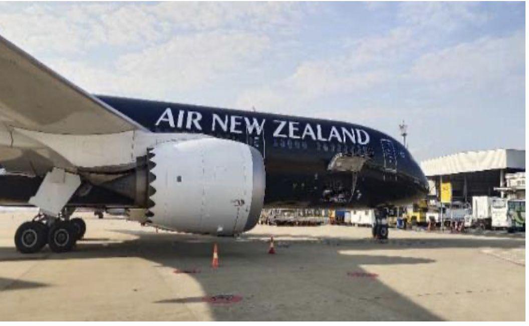 """新西兰航空、卡塔尔航空""""客转货""""复航中国市场"""
