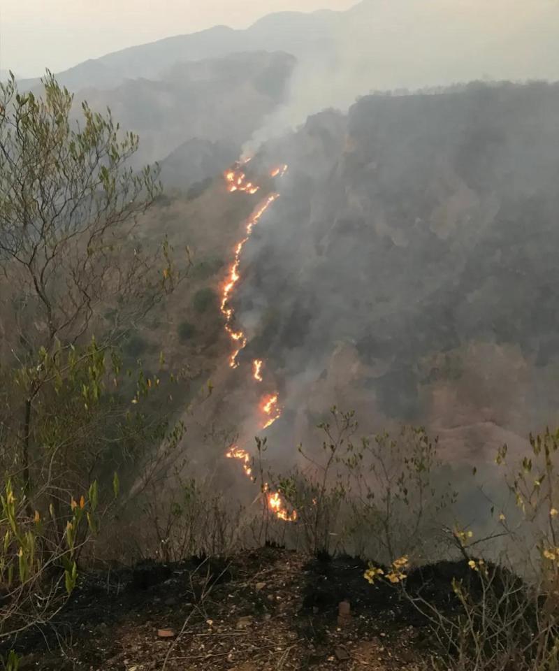 西昌森林火灾风速加大多处复燃!局部地段烧到城区,疏散过万人
