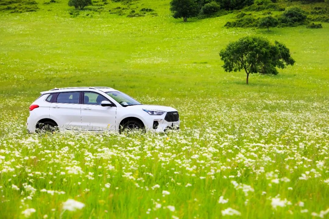 上班实力派,放假逍遥派 新哈弗H6 Coupe,国民SUV该有的样子
