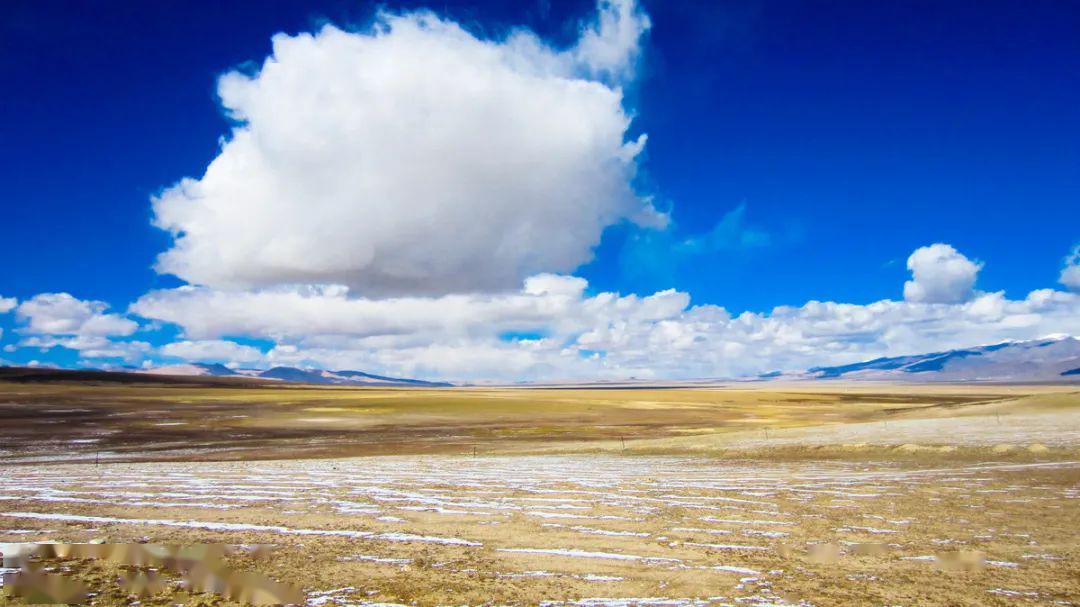 世界上海拔最高的公路!比川藏线艰险N倍!雪山、神湖、生灵、荒漠…从头美到尾!