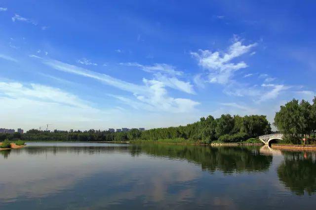 花红柳绿,春意渐浓,这个景色超好的免费郊野公园,您去过吗?