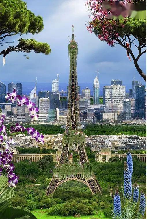 我看到了未来的巴黎,荒凉又诗意