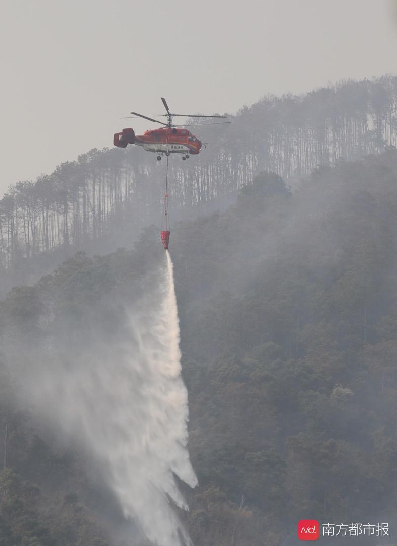 西昌森林大火扑救记:救火者连日奋战被熏黑,火灭后猴群归来觅食