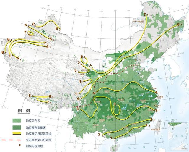 从江南仲春到塞北盛夏,它开遍了中国