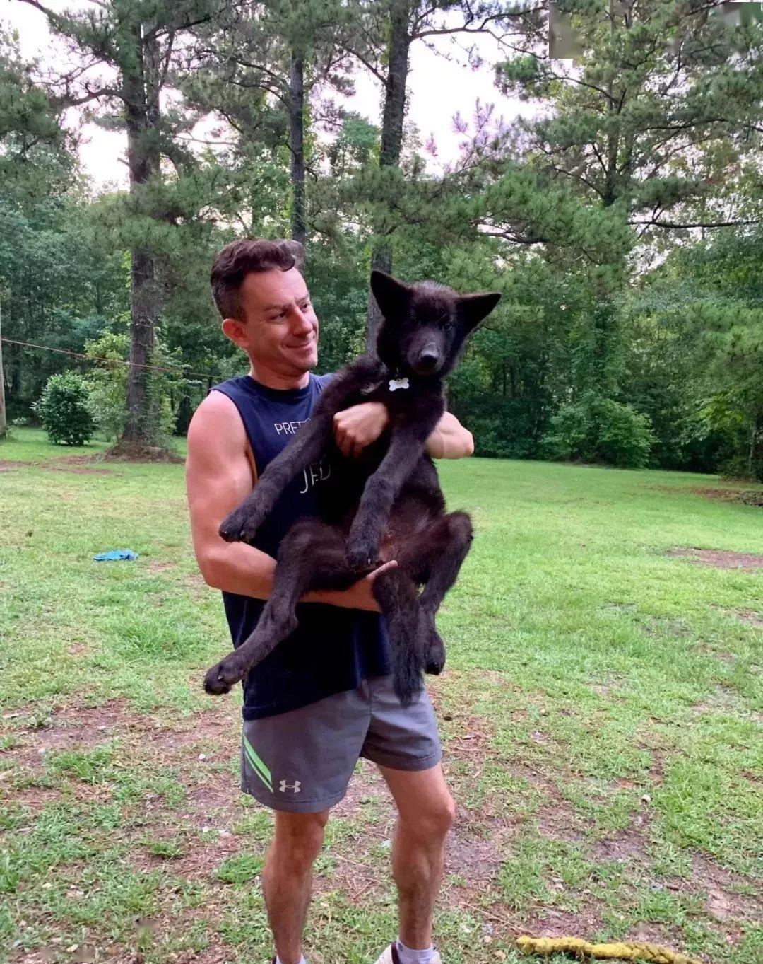 狗狗失踪六天后,主人收到项圈和纸条:狗我已经杀了,都赖你没栓绳!