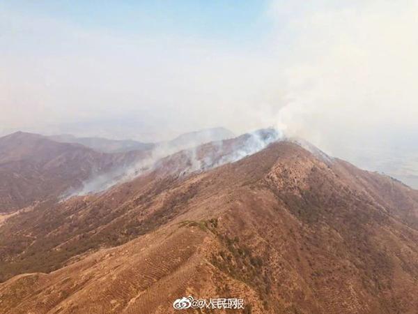 四问西昌森林火灾:为何