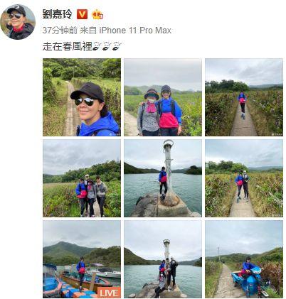 『踏青』骑三轮车面露笑容十分接地气刘嘉玲和友人一起踏青出游