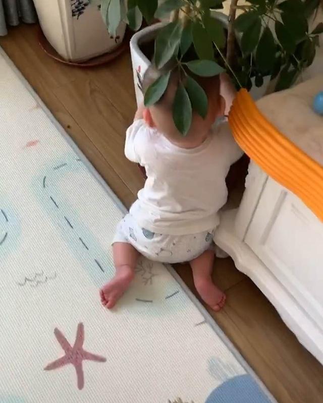 """趁妈妈玩手机,10个月宝宝偷偷""""吃土"""",网友:这是病,得治!"""