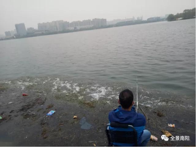 南阳段白河污染回访:垃圾依旧在,河堤扒扒种成菜