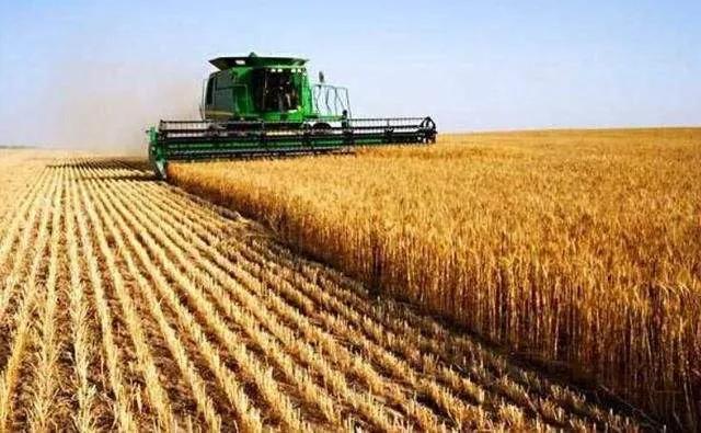 多国禁止粮食出口,中国14亿人的吃饭问题会受影响吗?