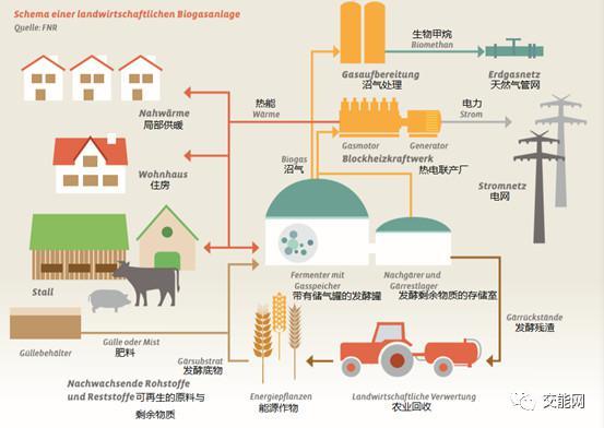 新能源 | 生物质能:未来能源战略的支柱产业