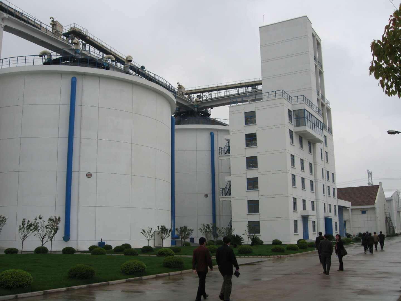 库存粮食 有图有真相!上海粮食储备库存居历史高位,口粮品种超80%