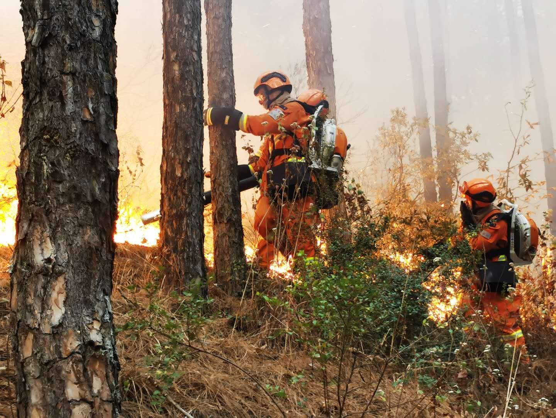 山火之下,他们守林守城守家园