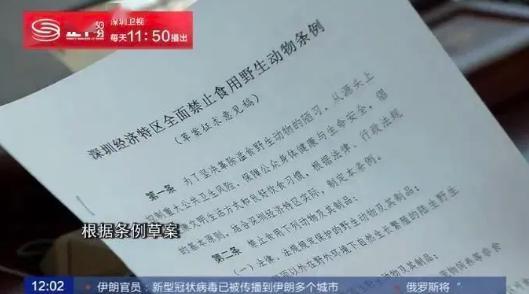 终于通过了!深圳立法禁食猫狗肉,5月1日正式施行!