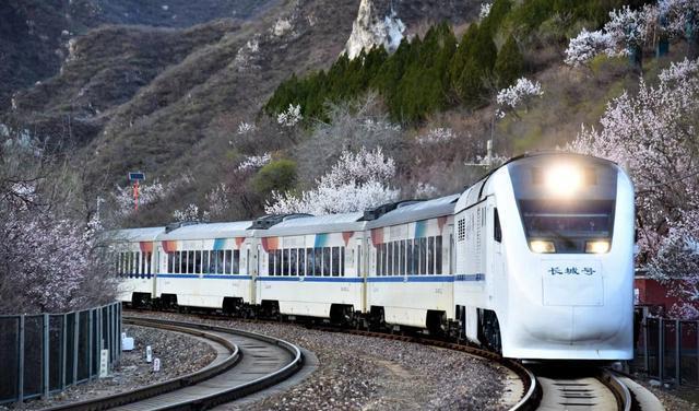 现实版花海列车 刷爆朋友圈的列车穿越花海来了!