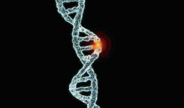 宝宝基因突变初期症状 宝宝基因突变能活多久?