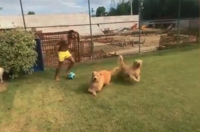 遛狗翻车现场!内马尔带球PK爱犬 遭狗子消极怠工