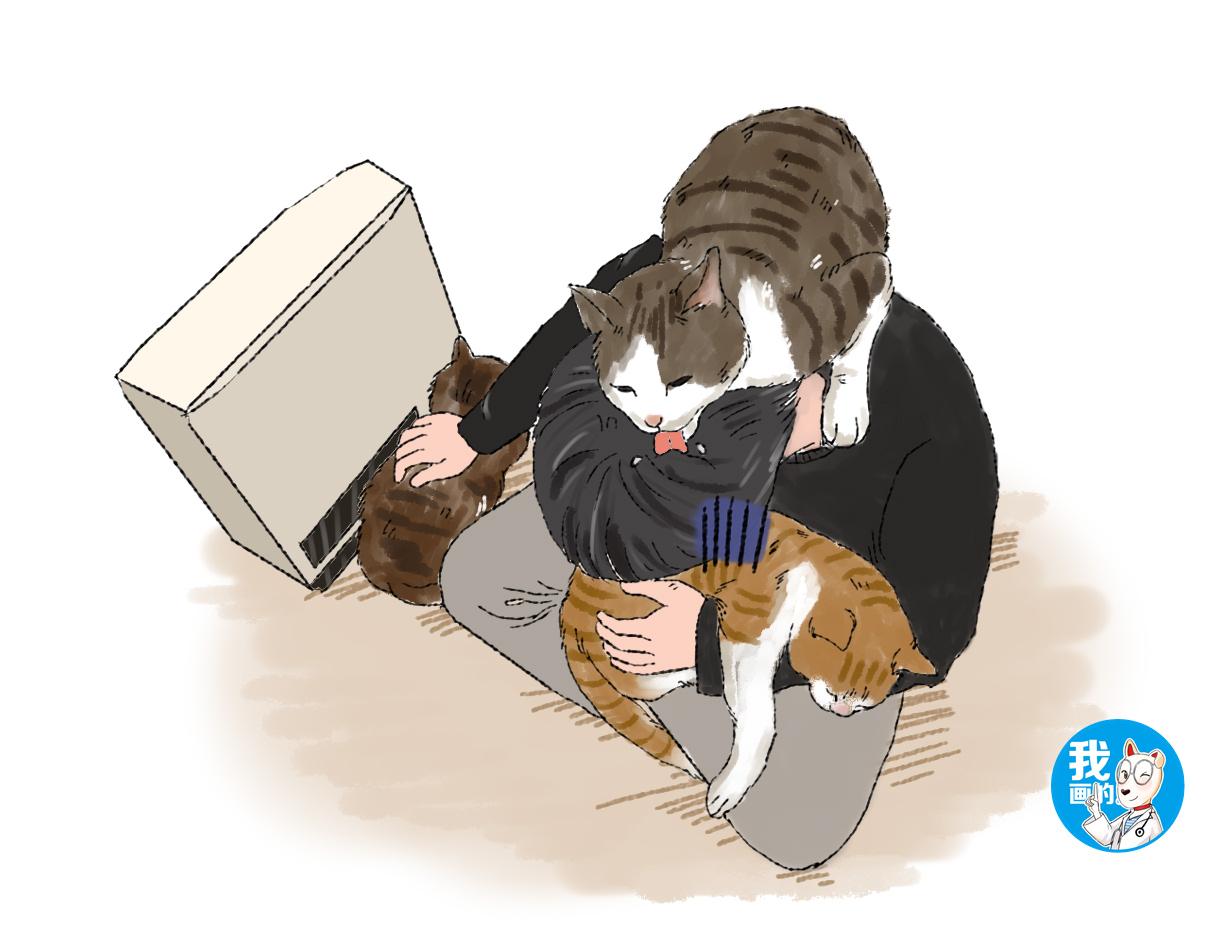 原创 猫咪总爱舔铲屎官的头,男子放弃了挣扎,随后头发竟发生了转变