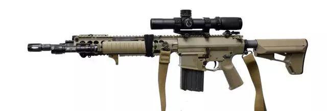 SR-25步枪系列