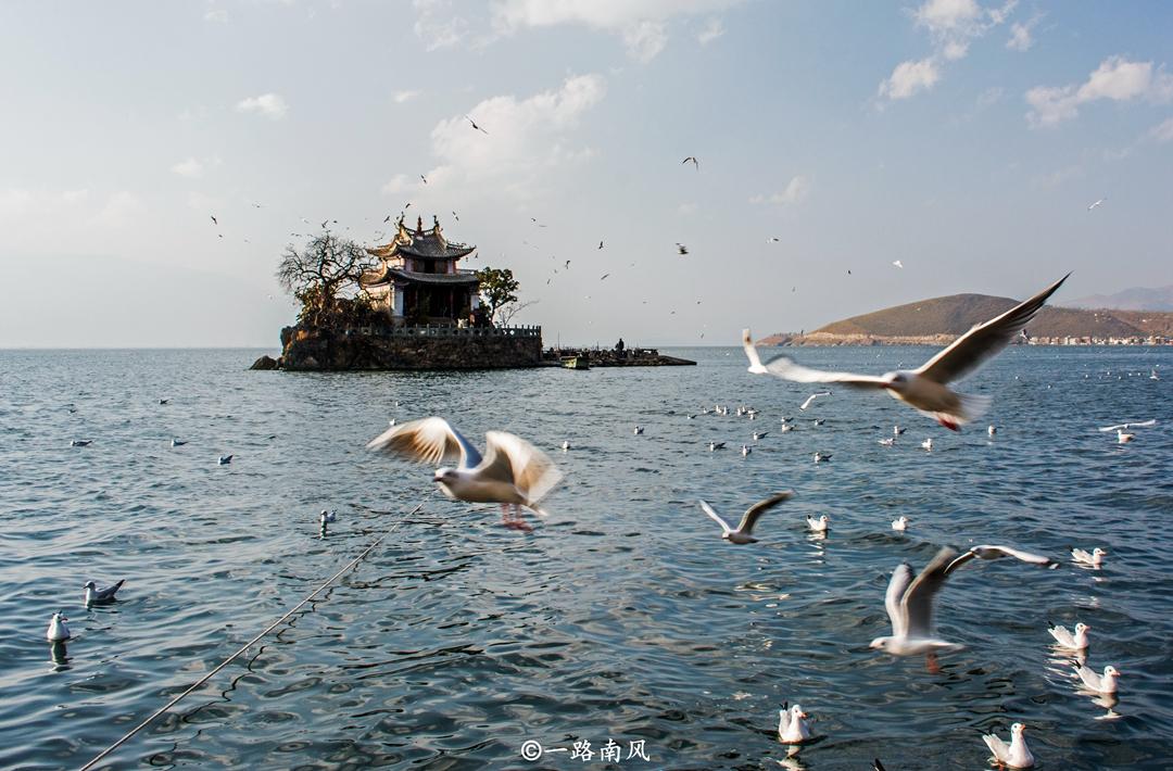 云南最袖珍岛屿,周长仅200米,上面只有一座小庙,现为旅游胜地