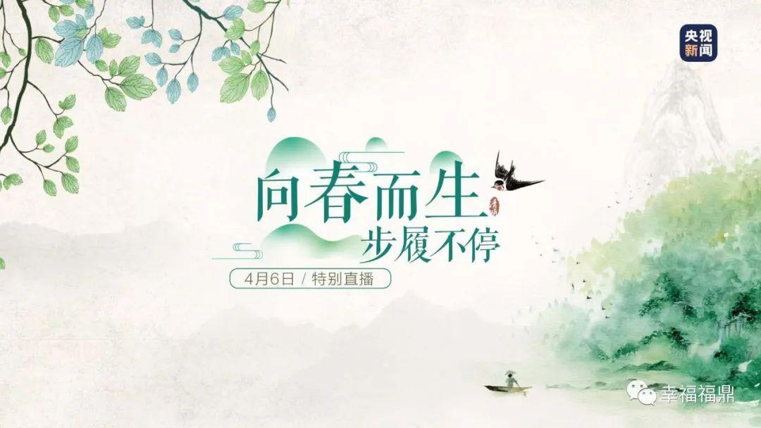 """福鼎春天的色彩,""""闯进""""央视直播节目……"""