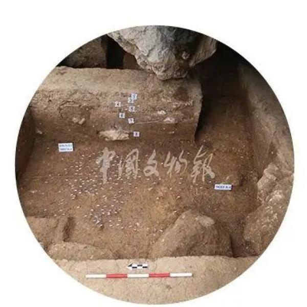 """石峁遗址、""""南海I号""""等20个项目入围全国十大考古"""