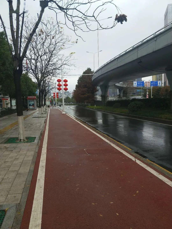 温度 | 武汉教师江莹:与一座城共进退