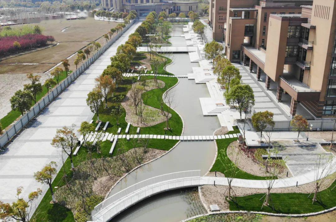 海绵校园即将完工 为临港高校单项面积最大项目